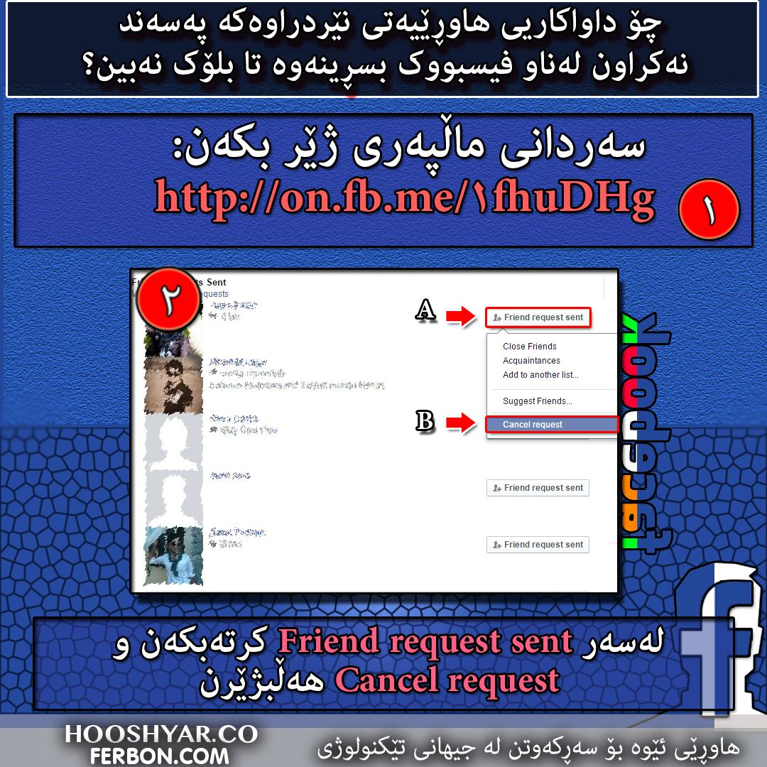 Delete-Request-Friends-Kurdi
